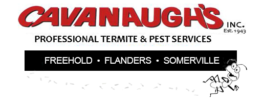 Cavanaughs Pest Mobile Logo